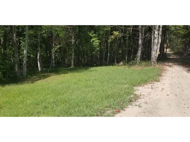 TBD Coal Pit Branch Road, Coeburn, VA 24250 (MLS #426995) :: Highlands Realty, Inc.