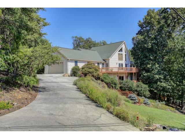 255 Chelaque, Mooresburg, TN 37811 (MLS #427031) :: Conservus Real Estate Group