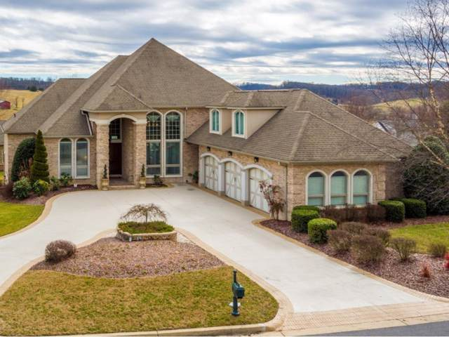 111 Laurel Ridge, Jonesborough, TN 37659 (MLS #427465) :: Bridge Pointe Real Estate