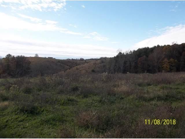 Lot 5 Mt Hope Road, Mohawk, TN 37810 (MLS #427565) :: Conservus Real Estate Group