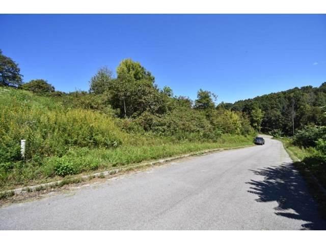 TBD Ashton Lane, Sneedville, TN 37869 (MLS #427642) :: Conservus Real Estate Group