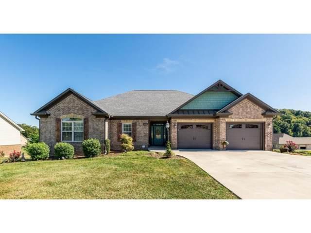694 Hales Chapel Road, Johnson City, TN 37615 (MLS #427849) :: Conservus Real Estate Group
