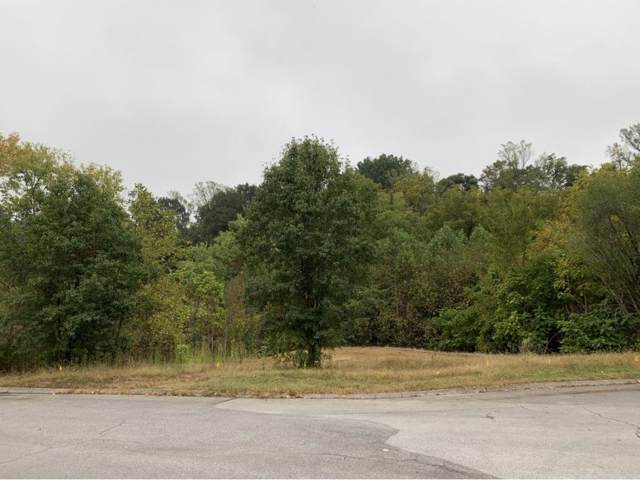Tbd Radcliffe Avenue, Kingsport, TN 37664 (MLS #427864) :: Red Door Agency, LLC