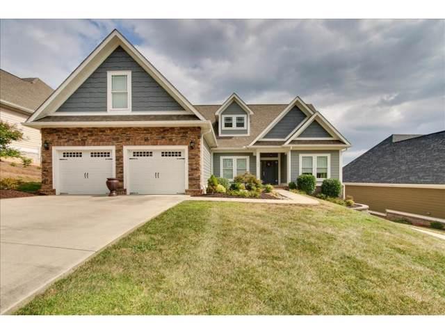 255 Old Island Trail, Kingsport, TN 37664 (MLS #427884) :: Conservus Real Estate Group