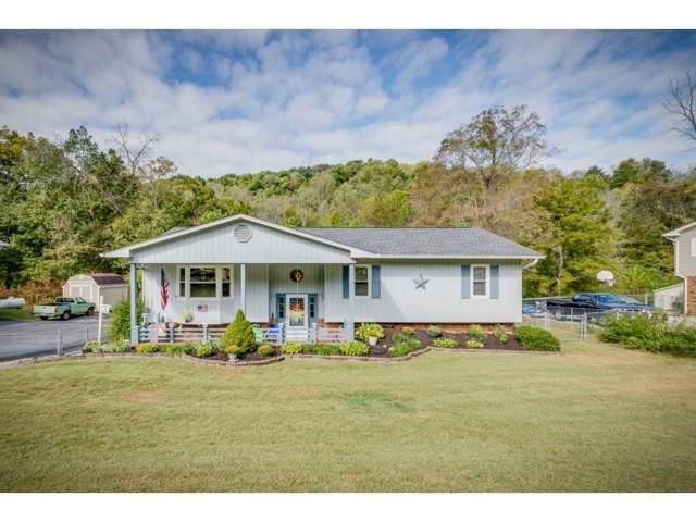 3833 Alderwood Drive, Kingsport, TN 37664 (MLS #428432) :: Highlands Realty, Inc.
