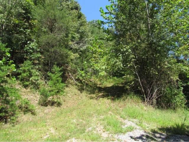0 Fork River Road, Abingdon, VA 24210 (MLS #428669) :: Conservus Real Estate Group