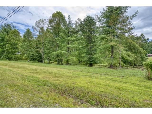 TBD Lot 2 Scioto Road, Unicoi, TN 37693 (MLS #428748) :: Conservus Real Estate Group