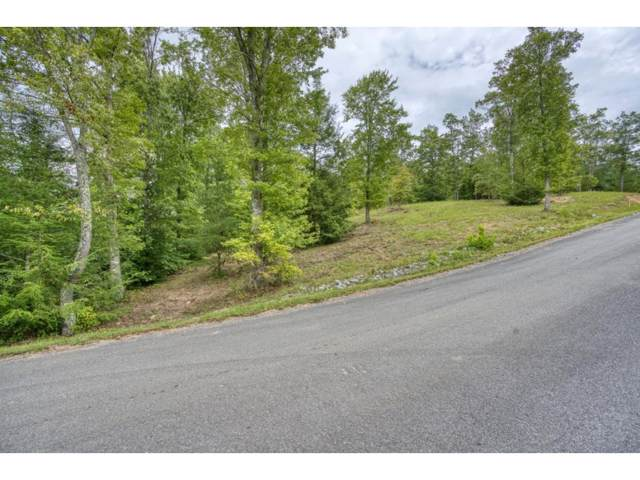 Tbd Lot 17 Colton Court, Unicoi, TN 37692 (MLS #428750) :: Conservus Real Estate Group