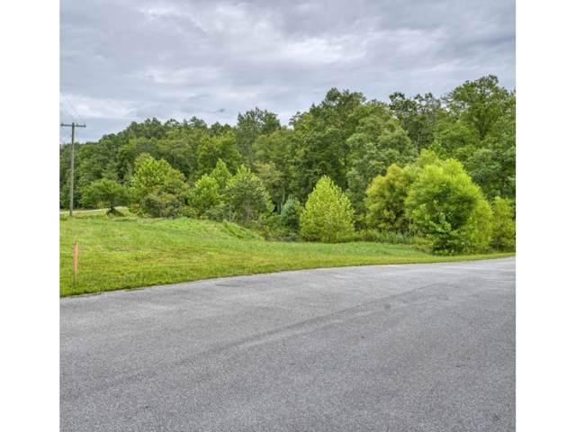 Tbd Lot 18 Colten Court, Unicoi, TN 37692 (MLS #428751) :: Conservus Real Estate Group