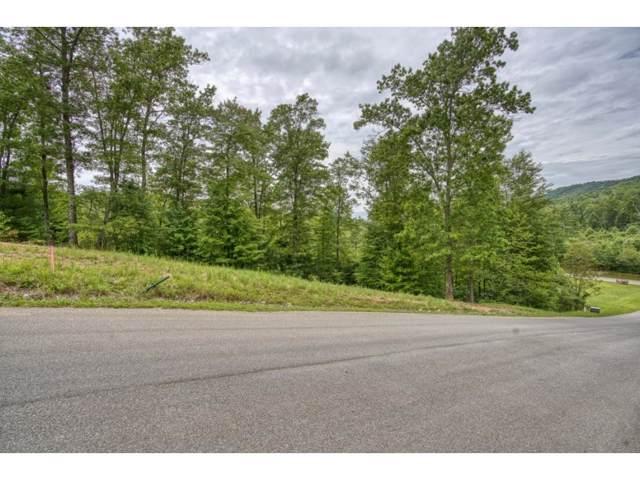 Tbd Lot 20 Homestead Drive, Unicoi, TN 37692 (MLS #428754) :: Conservus Real Estate Group