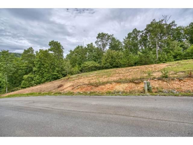 Tbd Lot 49 Homestead Drive, Unicoi, TN 37692 (MLS #428755) :: Conservus Real Estate Group