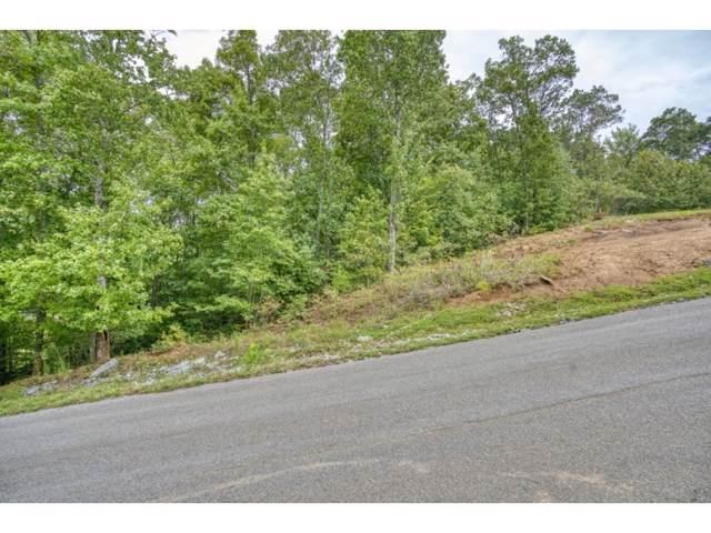 Tbd Lot 50 Sciota Road, Unicoi, TN 37692 (MLS #428756) :: Conservus Real Estate Group