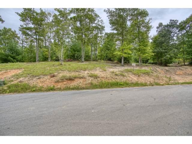 Tbd Lot 15 Colten Court, Unicoi, TN 37692 (MLS #428757) :: Conservus Real Estate Group