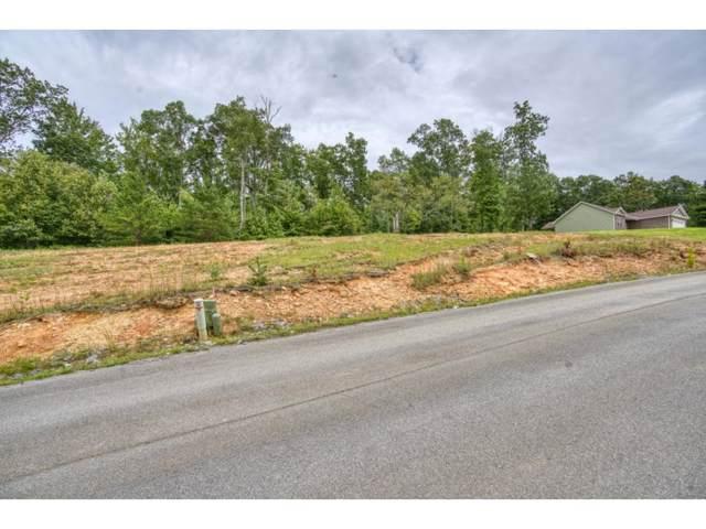 Tbd Lot 48 Homestead Drive, Unicoi, TN 37692 (MLS #428758) :: Conservus Real Estate Group