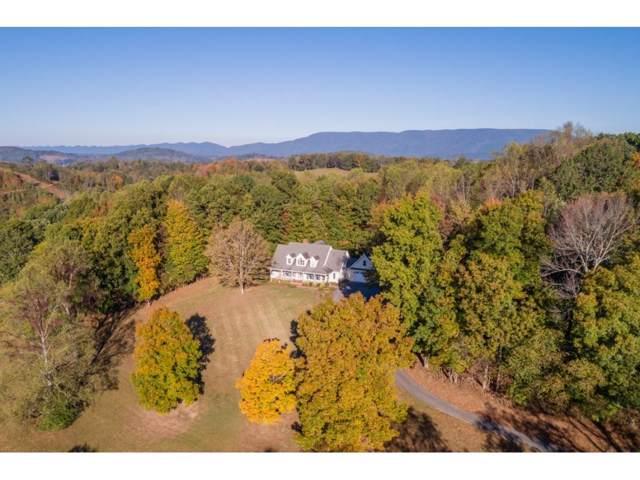 14139 Hawks Meadow, Abingdon, VA 24210 (MLS #428863) :: Conservus Real Estate Group