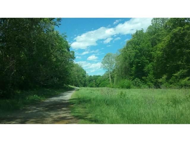 1360 Old Gray Station Road, Johnson City, TN 37615 (MLS #428946) :: Bridge Pointe Real Estate