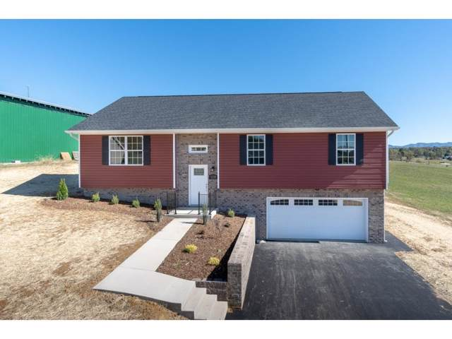 1120 Henderson Court, Jonesborough, TN 37659 (MLS #428983) :: Conservus Real Estate Group