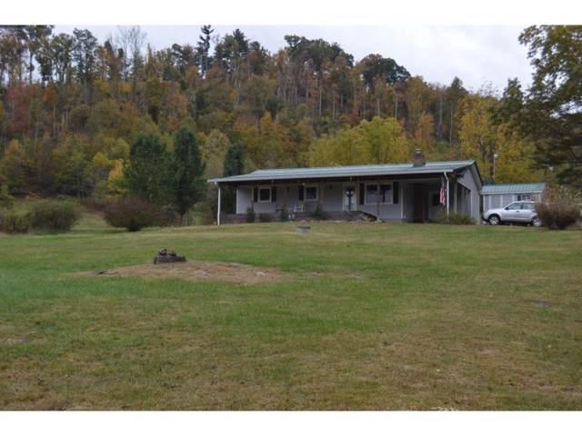233 Wolfe Lane, Butler, TN 37640 (MLS #429018) :: Conservus Real Estate Group