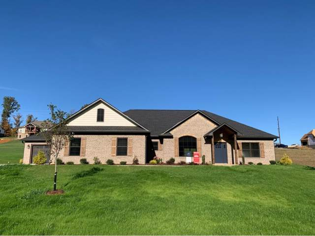 300 Loafers Glory View, Gray, TN 37615 (MLS #429031) :: Conservus Real Estate Group