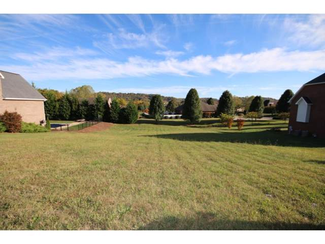 1365 Fall Creek Road, Kingsport, TN 37664 (MLS #429080) :: Conservus Real Estate Group