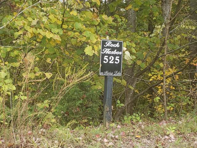 Lot 525 Garnet Trail, New Tazewell, TN 37825 (MLS #429133) :: Highlands Realty, Inc.