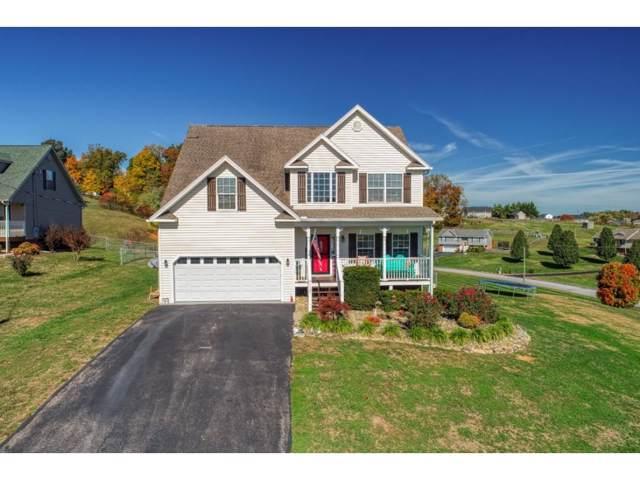 1121 Daisy Lane, Jonesborough, TN 37659 (MLS #429146) :: Bridge Pointe Real Estate