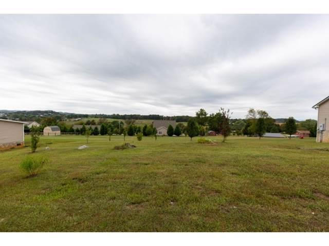 TBD Lakeview Lane, Gray, TN 37615 (MLS #429167) :: Conservus Real Estate Group