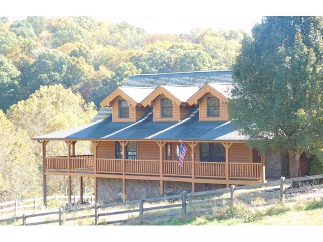 264 Island Road, Kingsport, TN 37664 (MLS #429227) :: Highlands Realty, Inc.