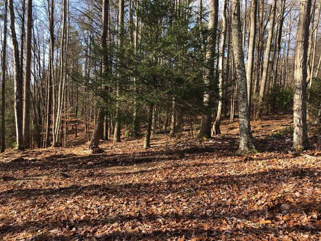 Lot 1 York Cabin Road, Bulter, TN 37640 (MLS #9901967) :: Tim Stout Group Tri-Cities