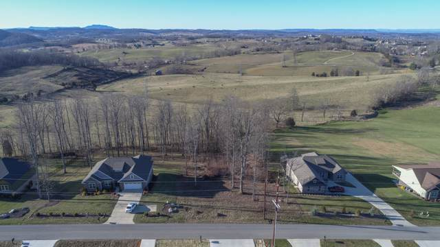 Tbd Hales Chapel Road, Gray, TN 37615 (MLS #9902332) :: Red Door Agency, LLC