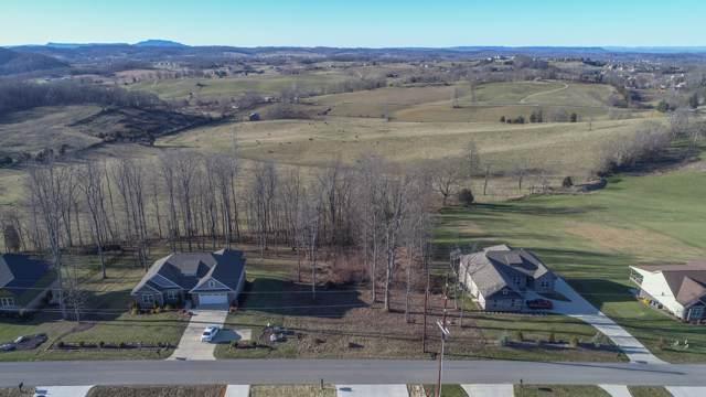 Tbd Hales Chapel Road, Gray, TN 37615 (MLS #9902332) :: Highlands Realty, Inc.