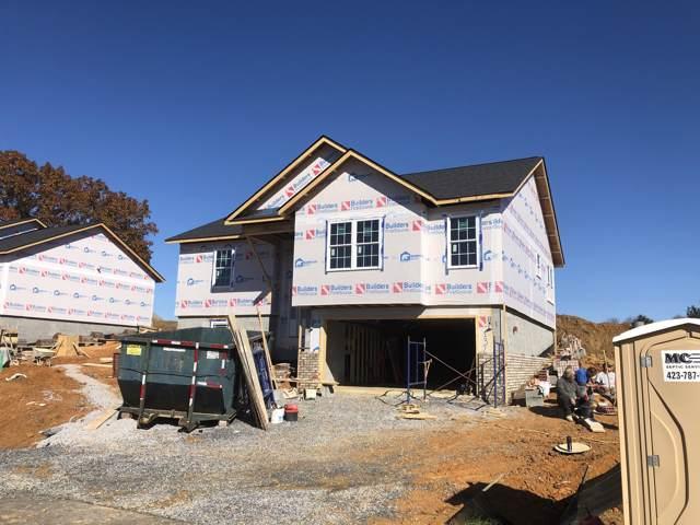 1324 Lemongrass, Jonesborough, TN 37659 (MLS #9902578) :: Conservus Real Estate Group