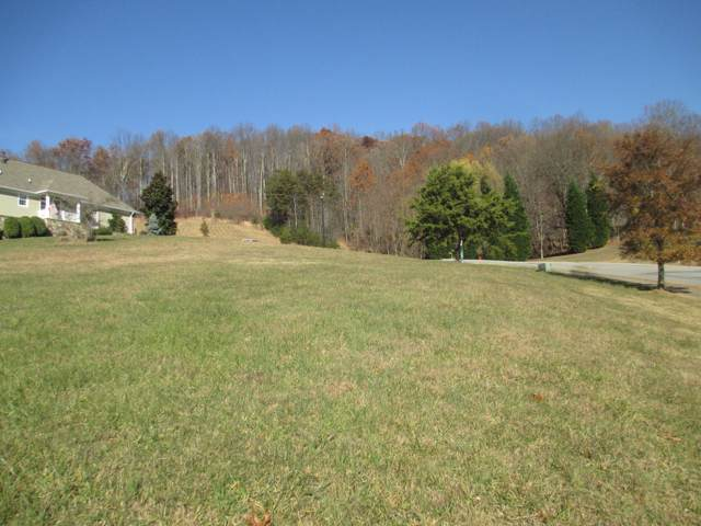 205 Old Island Trail, Kingsport, TN 37664 (MLS #9903441) :: Highlands Realty, Inc.