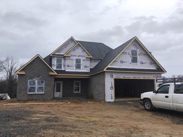 1109 Panoramic Vista, Gray, TN 37615 (MLS #9903875) :: The Baxter-Milhorn Group