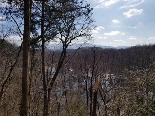 6055 Old Asheville Highway, Greeneville, TN 37743 (MLS #9904000) :: The Baxter-Milhorn Group