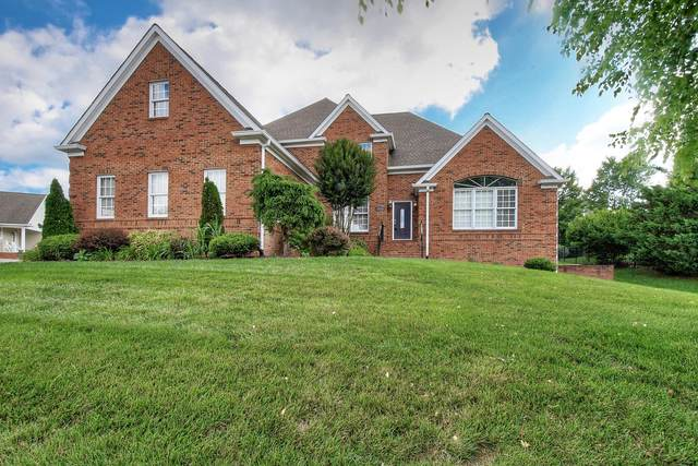 1129 Cattail Point Point, Johnson City, TN 37601 (MLS #9905262) :: Tim Stout Group Tri-Cities