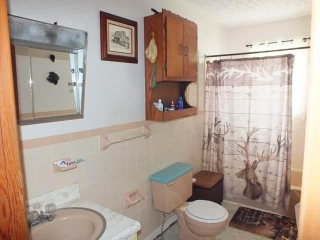 1705 Beech Creekk Road, Rogersville, TN 37857 (MLS #9905315) :: Highlands Realty, Inc.