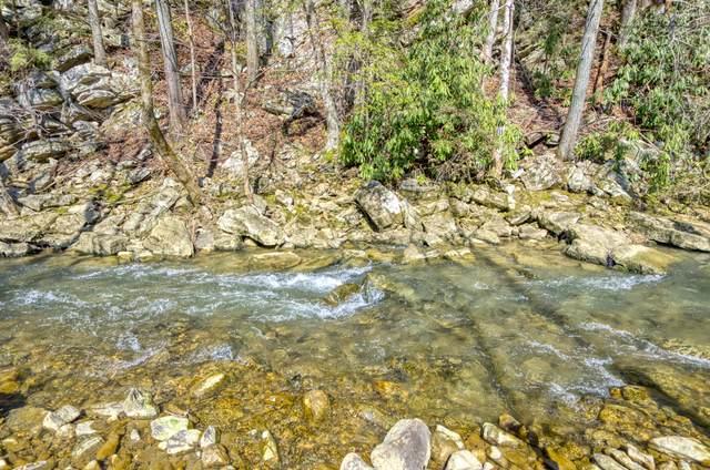 Tbd Beech Creek Road, Rogersville, TN 37857 (MLS #9905722) :: Highlands Realty, Inc.