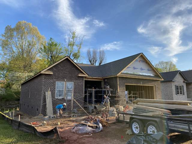 519 Nettle Tree Court, Johnson City, TN 37604 (MLS #9906324) :: Conservus Real Estate Group