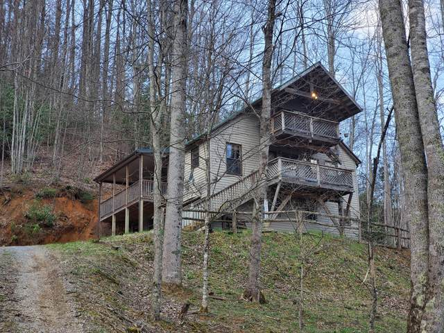 115 Will Hughes Road, Roan Mountain, TN 37687 (MLS #9906444) :: The Baxter-Milhorn Group