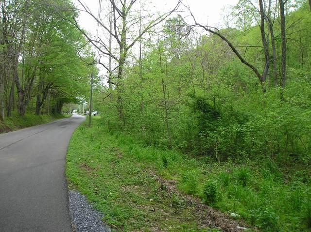 Tbd Wahoo Valley Road, Kingsport, TN 37663 (MLS #9907281) :: Highlands Realty, Inc.