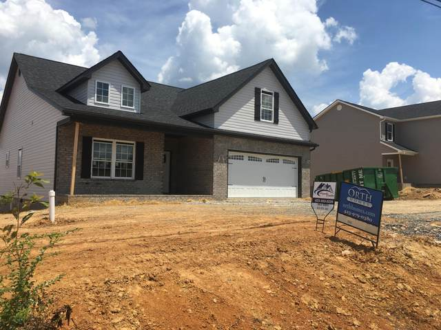 1518 College Street, Jonesborough, TN 37659 (MLS #9907947) :: Conservus Real Estate Group