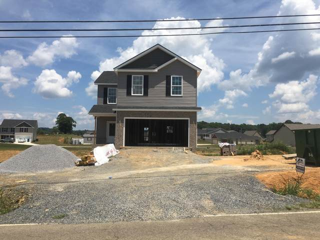 1530 College St, Jonesborough, TN 37659 (MLS #9908799) :: Conservus Real Estate Group