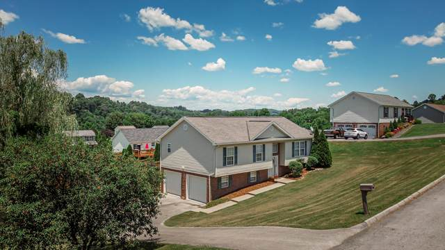 120 River Bluff Way, Bluff City, TN 37618 (MLS #9909028) :: Conservus Real Estate Group