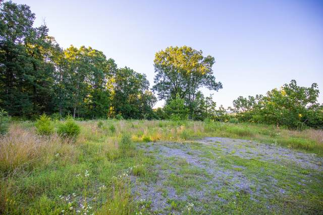 259 Crussell Drive, Piney Flats, TN 37686 (MLS #9909898) :: Highlands Realty, Inc.