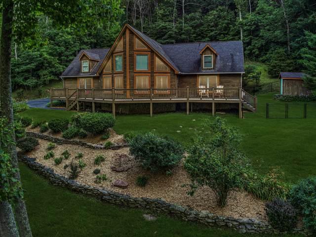 452 High Meadows Drive, Lebanon, VA 24266 (MLS #9909904) :: Bridge Pointe Real Estate