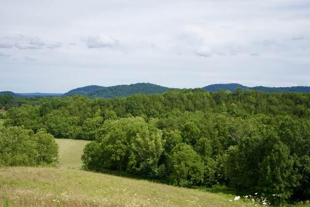 (Tbd) Clouds Creek Road, Rogersville, TN 37857 (MLS #9910279) :: Highlands Realty, Inc.
