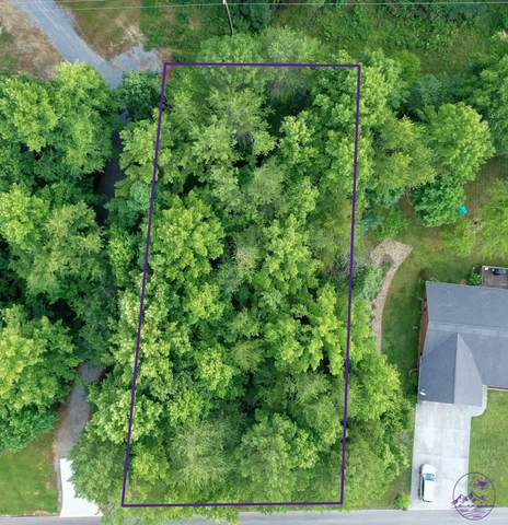 Tbd Rayley Court, Greeneville, TN 37745 (MLS #9910350) :: Highlands Realty, Inc.