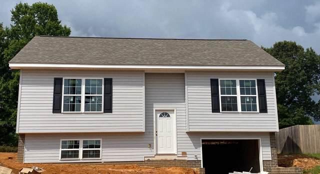 1099 Snowden Terrace, Johnson City, TN 37601 (MLS #9910688) :: Bridge Pointe Real Estate