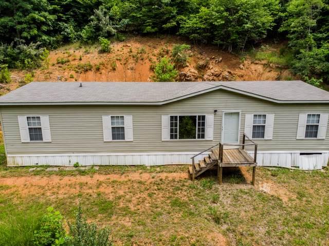 145 Dove Drive, Duffield, VA 24244 (MLS #9910915) :: Highlands Realty, Inc.